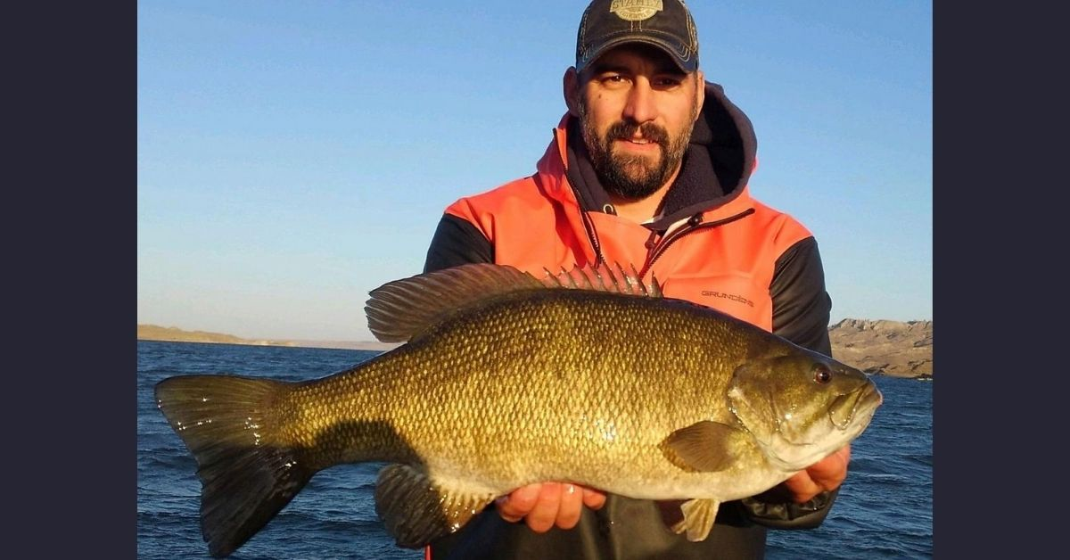 state record smallmouth montana 2.jpg