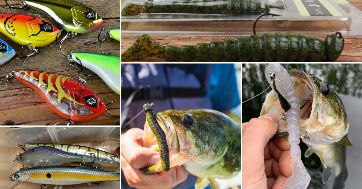 5 spring baits for bass up north.jpg